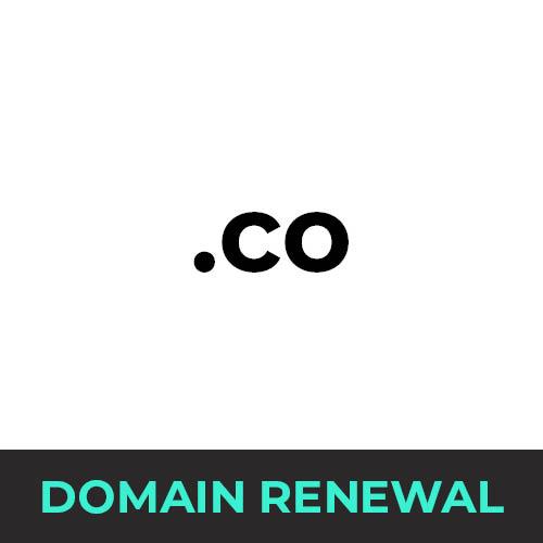 .co Domain Renewal